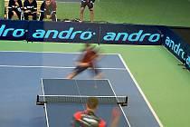Extraliga stolního tenisu: Olomouc proti Dvoru Králové