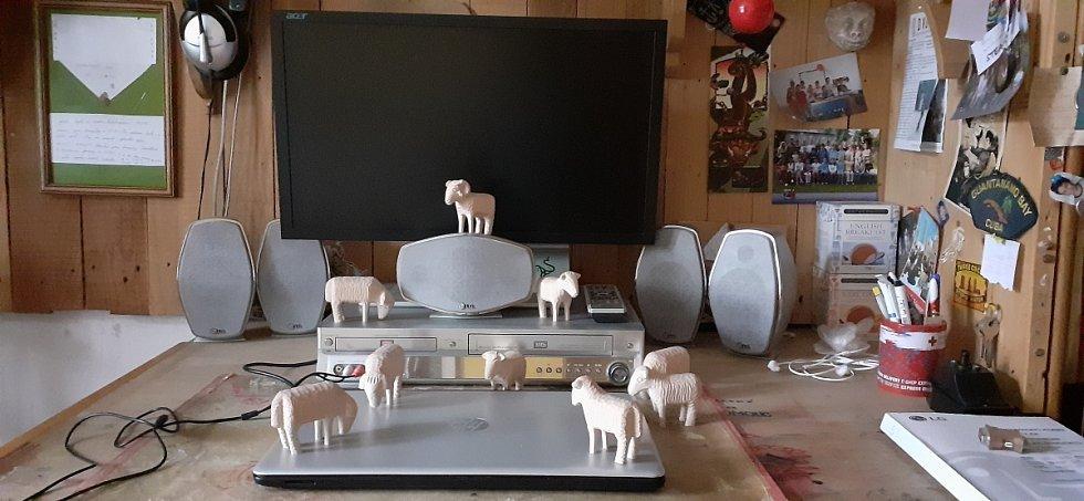 Vyřezávané ovce
