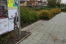 Ze Slavonínské ulice na hustě obydleném jižním okraji Olomouce zmizel přes noc přístřešek zastávky i s lavičkou