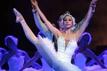Labutí jezero na scéně Moravského divadla