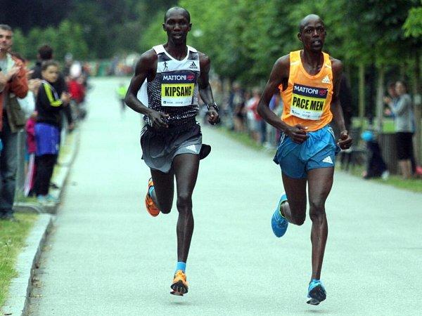 Wilson Kipsang a jeho vodič Geoffrey Ronoh - vítěz 5.ročníku Olomouckého půlmaratonu