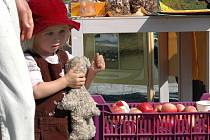 Jablečný den na Sluňákově