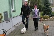 V Držovicích u Prostějova mají jednu z nejhezčích volebních místností na okrese. Lidé chodí volit s dětmi i psy.