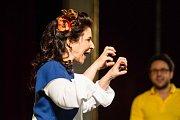 Divadelní Flora 2017 - The situation