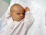 Anna Kročilová, Prostějov narozena 22. ledna míra 52 cm, váha 3600 g