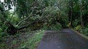 Následky bouřek v Olomouckém kraji - noc z pondělí 11.6. na úterý 12.6.