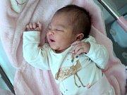 Sofie Krutová, Olomouc, narozena 26. února ve Šternberku, míra 49 cm, váha 3500 g