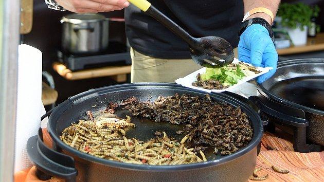Extrem food festival