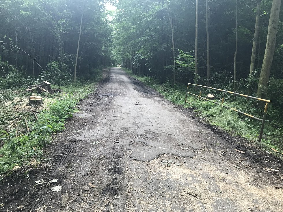 Lesní cestu k Lovecké chatě u Horky nad Moravou zavře oprava. Opraven bude také mostek na snímku