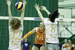 Challenge Cup: olomoucké volejbalistky (v oranžové) proti Poreči