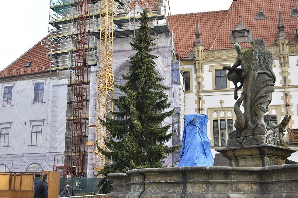 Vánoční smrk na Horním náměstí v Olomouci ještě před zdobením, 17. 11. 2019