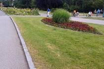Výstaviště Flora Olomouc začalo s proměnou záhonů s geometrickými obrazci do přírodnější podoby. Záhonů s tradičnější úpravou zůstane jen několik.