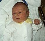 Dalibor Švec, Újezd, narozen 31. října ve Šternberku, míra 52 cm, váha 3530 g