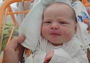Tereza Hořínová, Velká Bystřice, narozena 12. května v Olomouci, míra 53 cm, váha 3850 g