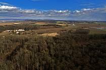 V městských lesích v okolí Olomouce při vichřici popadaly vzrostlé oslabené jasany. Les Království. 12. 2. 2020