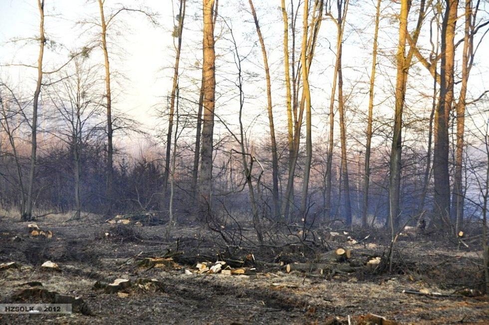 Požár lesa v Grygově