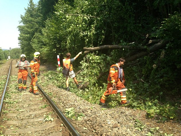 Zaměstnanci firmy v Mariánském Údolí neváhali a ihned se vrhli na řezání a odklízení těžkých větví.