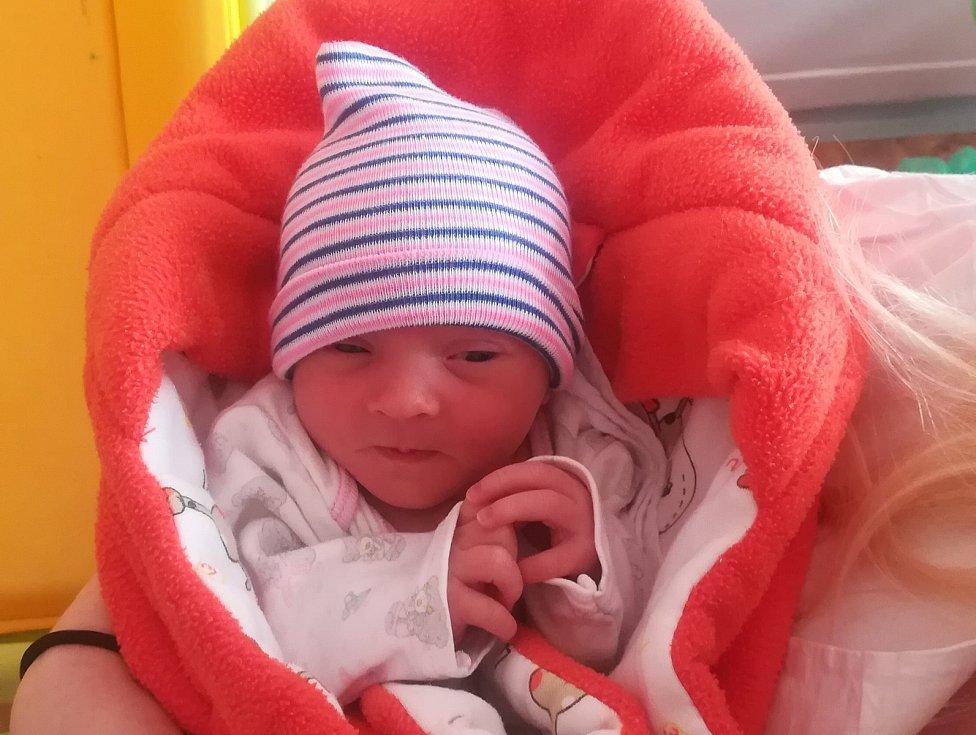 Natálie Michalíková, Olomouc, narozena 3. ledna, míra 48 cm, váha 2280 g