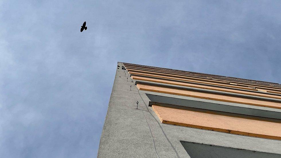 Kavka obecná by chtěla zahnízdit, ale nemá kde. Útokem bere zateplené fasády. Šmeralova ulice v Olomouci 11. února 2021