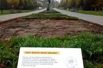 Záhony v Rudolfově aleji procházejí obnovou. 2. 11. 2020
