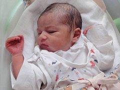 Jasmine Ahmed, Olomouc, narozena 11. července v Olomouci, míra 48 cm, váha 2830 g