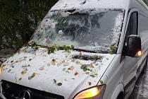 U horské obce Vidly na úpatí Pradědu spadla na auto část stromu, který nevydržel nápor těžkého sněhu a silného větru.