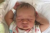 Amálie Havlenová, Hněvotín, narozena 29. června, míra 50 cm, váha 3340 g