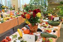 výstava ovoce, zeleniny a květin