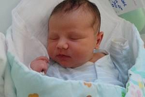Teodor Stejskal, Hostkovice-Tršice, narozen 1. února, míra 50 cm, váha 3920 g