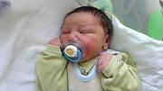Robert Miko, Olomouc, narozen 8. dubna, míra 51 cm, váha 3950 g