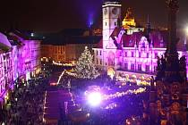 Vánoční strom na Horním náměstí v Olomouci, jmenuje se Polárka