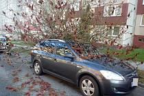 Následky silného větru - 2. prosince 2016. Olomouc