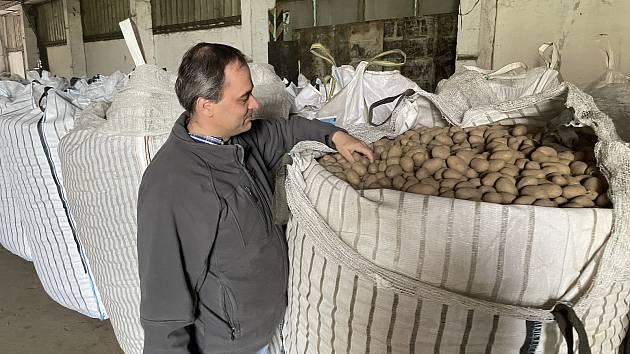 Zemědělské družstvo Vrbátky, sadbové brambory, 21. dubna 2021
