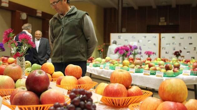 Výstava zeleniny, ovoce a květin ve Velkém Týnci