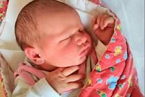 Eliška Faltysová, narozena 19. prosince 2016 ve Šternberku, míra 52 cm, váha 3960 g