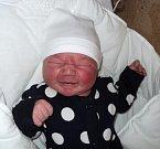 Tomáš Los, Sudkov, narozen 10. ledna ve Šternberku, míra 50 cm, váha 3900 g