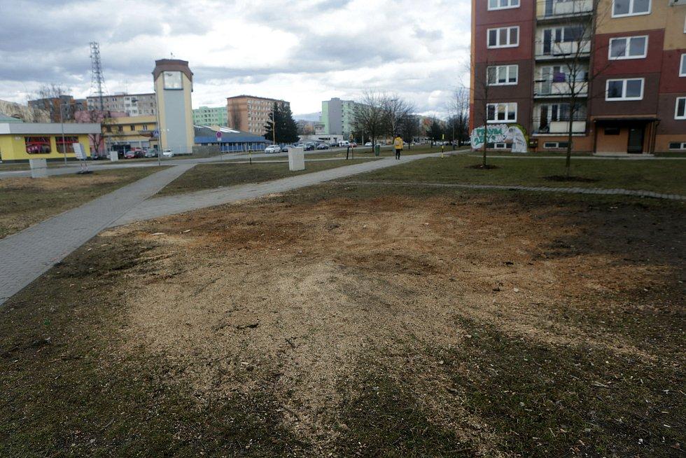 Křižovatka Zikova x Schweitzerova. Příprava na stavbu prodloužení tramvajové trati přes Nové Sady, 12. března 2021