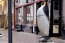 Plastika tučňáka na Dolním náměstí v Olomouci poté, co ji někdo srazil a rozbil
