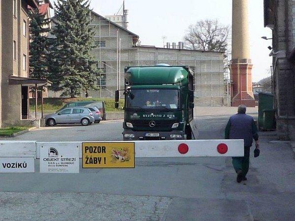 Žáby uhanušovického pivovaru mění silniční pravidla