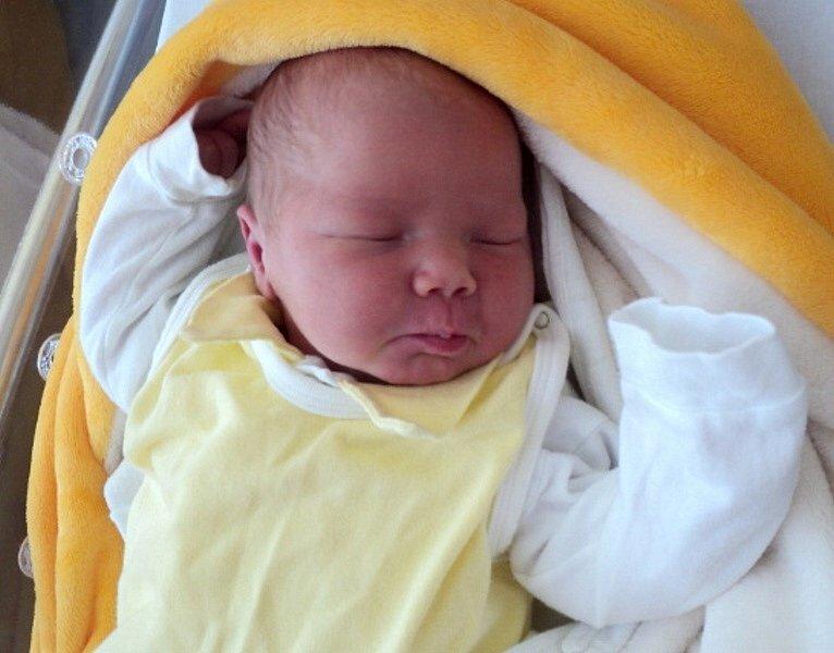 Anežka Zpěváková, Žerotín, narozena 10. července ve Šternberku, míra 51 cm, váha 3720 g