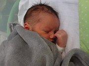 Sebastián Pejsar, Olomouc, narozen 6. ledna, míra 50 cm, váha 3720 g