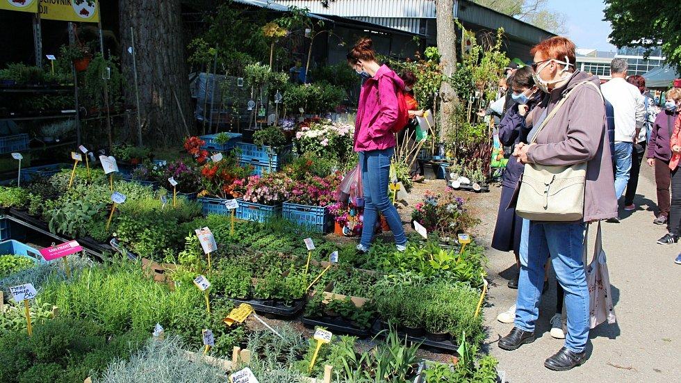 Zahradnické trhy na výstavišti Floře v Olomouci v květnu 2020, jarní Flora byla kvůli covidu zrušená