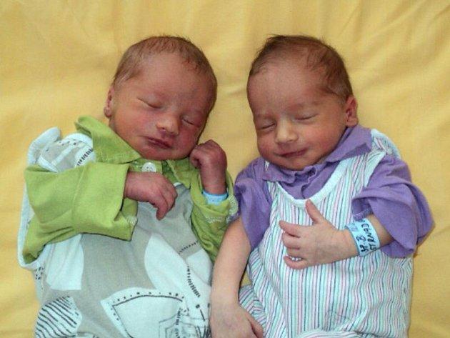 Oliver a Sebastian Strnadovi, Babice, narozeni 12. června ve Šternberku, míra 49 a 48 cm, váha 2500 a 2650 g