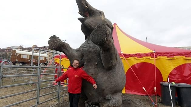 "Národní cirkus Berousek v Olomouci - ""Principál"" Berousek junior"