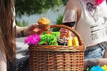 piknik ilustrační