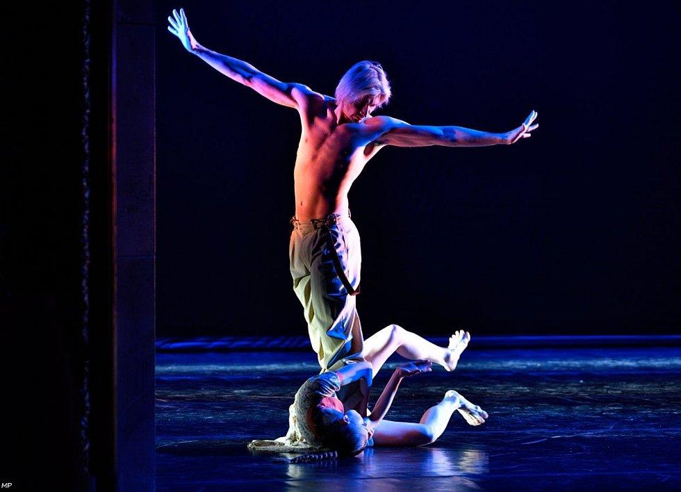 Taneční inscenace Rain, s Alinou Nanu. Vystoupení 28.února 2018 v Národním divadle moravskoslezském v Ostravě.