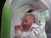 Barbora Oherová, Svésedlice, narozena 23. července v Olomouci, míra 50 cm, váha 3280 g.