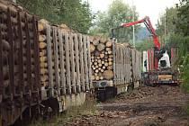 Překladiště dřeva ve Šternberku.