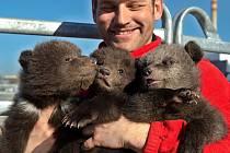 Tři malá medvíďata budou za několik měsíců novou ozdobou zooparku Národního Cirkusu Originál Berousek.