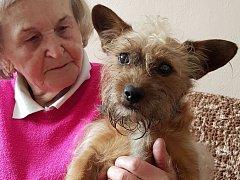 Pes Bobík se svou majitelkou Irmou Komínkovou